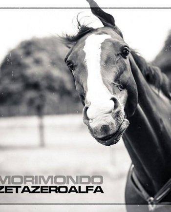Zetazeroalfa – Morimondo